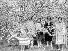 apple blossoms gals, Winchester, Virginia, May 1926 Old Photos, Vintage Photos, Winchester Virginia, Apple Blossoms, Virginia Is For Lovers, Shenandoah Valley, 20s Fashion, Vintage Photography, Costume Design