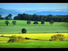 cristiano quevedo gaucho de coraçao - YouTube