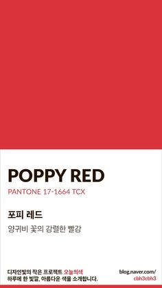 Flat Color Palette, Colour Pallette, Pantone Colour Palettes, Pantone Color, Red Color Names, Red Color Background, Red Color Schemes, Color Test, Web Design