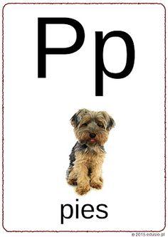 Alfabet dla dzieci do wydruku Polish Language, Montessori, Printables, Reading, Geography, Speech Language Therapy, Paper, Print Templates, Reading Books