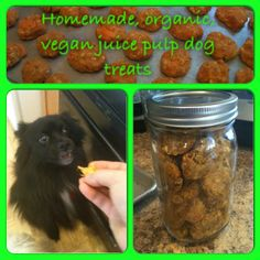 Homemade Organic, Vegan Juice Pulp Dog Treats using the pulp from juicing!
