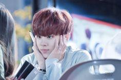150501 UP10TION Wonju FansigningWooshinCr:  오레오  Do not edit