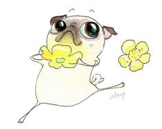 Buttercup InkPug!!
