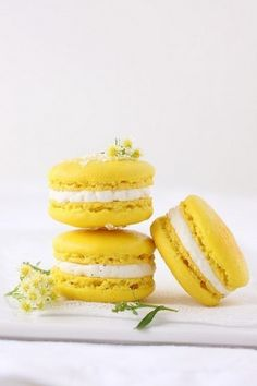 Macaron festa della donna