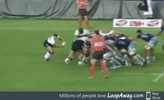 Rugby at its best [x-post /r/gifsthatkeepongiving] Rugby Memes, Rugby Funny, Rugby Quotes, Cycling Quotes, Cycling Art, Women's Cycling Jersey, Cycling Jerseys, Rugby League, Rugby Players
