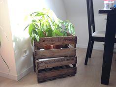 pappap wandregal sch ne ideen pinterest. Black Bedroom Furniture Sets. Home Design Ideas