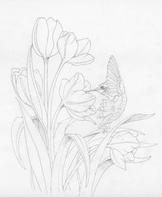 Pássaros com flores
