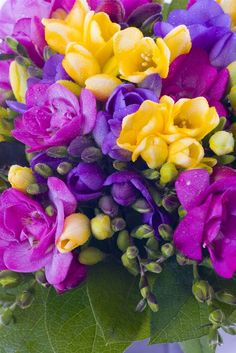 www.handmadeweddings.co.uk Freesias - a colourful and affordable flower for a wedding in summer #seasonal #scentedflowers