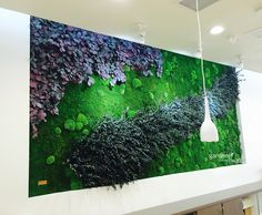Garden On The Wall uses preserved moss, eucalyptus, ferns and other living plants to create beautiful vertical gardens, ceiling gardens & wall gardens. Moss Wall Art, Moss Art, Succulent Wall Art, Plant Wall, Moss Graffiti, Vertical Garden Design, Shadow Box Art, Interior Garden, Nature Decor