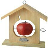 I want this for oranges, for my Orioles! Fruit Feeder House for Birds