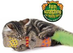 Petstages Kick & Scratch – Such a simple toy and yet so smart and fun! This ribbed corrugated cardboard kicking toy will feel and sound enticing to your cat and the feather tail makes it even better!