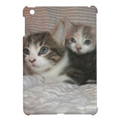 #Kitties Chilaxin #iPad #Mini #Cover!  Check out the #kittens and #momma #cat!  #customizable #Adult #boy #girl #cute #store #zazzle http://www.zazzle.com/conquestkitty*