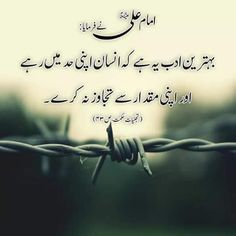 Na Wise Quotes, Urdu Quotes, Islamic Quotes, Quotations, Inspirational Quotes, Qoutes, Hazrat Ali Sayings, Imam Ali Quotes, Deep Words