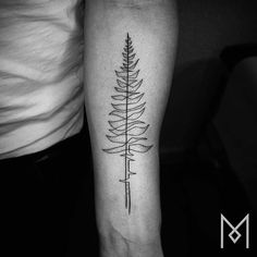 Continuous line pine tree tattoo on the left inner forearm.