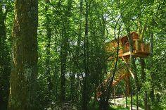 BASOA SUITES, el primer complejo turístico con cabañas en árboles de Navarra, construidas con nuestra madera.