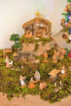 My Fontanini Nativity