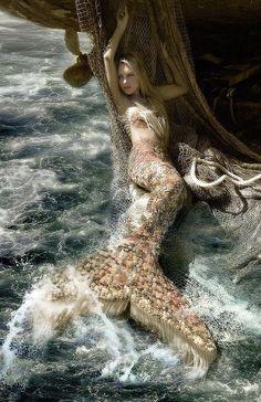 Hannah Mermaid - Hannah Fraser is a professional Mermaid, ocean environmentalist, performance artist and model. Magical Creatures, Fantasy Creatures, Sea Creatures, Beautiful Creatures, Real Mermaids, Mermaids And Mermen, Pretty Mermaids, Fantasy Mermaids, Professional Mermaid