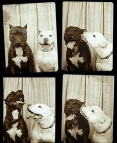 photo booth :)