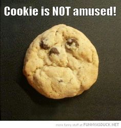 Funny stuff  - popculturez.com - Looks like the cookie is in pain.  This site will help with that PainKickers.com/...