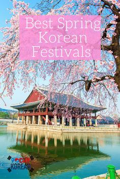 Ready for an amazing spring in Korea? Pull out your calendars, because spring festivals in Korea are right around the corner! Here's what to see this year. South Korea Travel, Asia Travel, Cities In Korea, Festival Dates, Living In Korea, Jeju Island, Learn Korean, Korean Guys, Korean Food