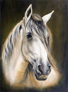 Cheetah Tattoo, Farm Art, Christmas Drawing, All The Pretty Horses, Pastel Drawing, Colorful Paintings, Equine Art, Black And White Pictures, Horse Art