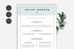 Minimal and modern resume template that will help you get your dream job today ! Stand out from the crowd with an elegant and clean resume. Best Resume, Resume Cv, Resume Tips, Resume Examples, Resume Design, Modern Resume Template, Cv Template, Resume Templates, Design Templates