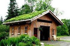 Fabriquer soi-même un toit végétal : mode d'emploi http://www.toutvert.fr/fabriquer-soit-meme-toit-vegetal/