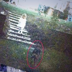 The photo above reportedly shows a little girl toddling towards her 'imaginary' friend. Real Ghost Pictures, Ghost Images, Ghost Pics, Creepy Stories, Ghost Stories, Paranormal Pictures, Creepy Ghost, Ghost And Ghouls, Creepy Pictures