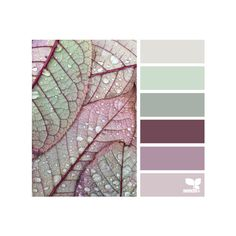 design seeds | for all who ♥ color ❤ liked on Polyvore featuring design seeds, backgrounds, colors and pictures