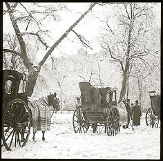 Hansom Cabs, Central Park by Alfred Stieglitz United States of America 1894 AD Photographs New York