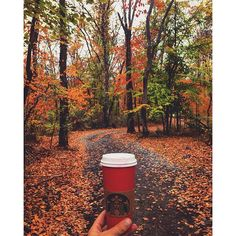 Cheers to fall. Red Cup Contest entrant: Instagram user @xarisk