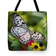 #totebag #totebags #butterflytotebag #butterfly #butterflies #gifts #butterflygifts