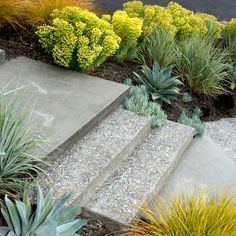 Image result for coloured concrete path