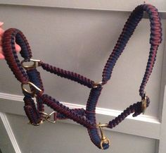 Horse head collar in Foot Guards colours