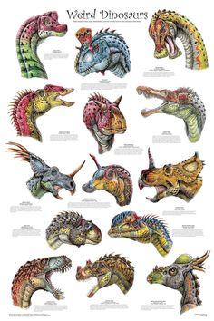 Dinosaur Tracks, Dinosaur Jr, The Good Dinosaur, Science Chart, Dinosaur Garden, Preschool Science Activities, Science Classroom, Dinosaur Balloons, Dinosaur Posters