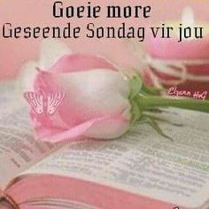 Sondag Good Night Wishes, Good Morning Good Night, Sunday Qoutes, Beautiful Bible Quotes, Afrikaanse Quotes, Goeie More, Morning Quotes, Messages, Advice