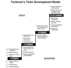 Tuckman's Forming, Storming, Norming, and Performing - Team & Group Development Model. Good to know if you're leading teams! Leadership Strategies, Leadership Development, Personal Development, Change Management, Management Tips, Project Management, Team Leader, A Team, Team Quotes