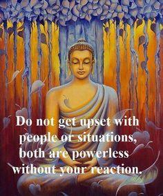Wednesday Wisdom...