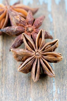 Add about 4 to 5 Star Anise to broiling water when cooking oatmeal! Add about 4 to 5 Star Anise to broiling water when cooking oatmeal! Curry Spices, Sweet Spice, Spices And Herbs, Star Anise, Serious Eats, Seed Pods, Natural Forms, Spice Things Up, Food Art