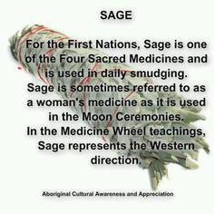 Native American Spirituality, Native American Wisdom, American Indians, Smudging Prayer, Sage Smudging, Medicine Wheel, Healing Herbs, Holistic Healing, Book Of Shadows