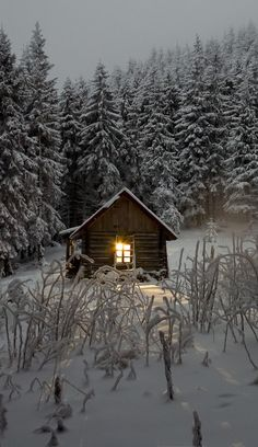 Tranquil Snow Cabin