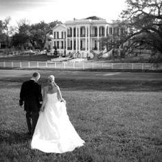 Perfect wedding on a plantation