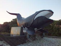 2013年2月24日の朝に、和歌山県東牟婁郡太地町の梶取崎(かんどりざき)の風景を撮影した際の一枚です。