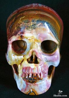 African Petrified Wood Crystal Skull