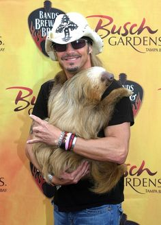 Harry the Sloth, ambassador from Busch Gardens, with his friend, Bret Michaels. I love me a sloth. Gotta hold one before I die. Bret Michaels Poison, Bret Michaels Band, 80s Hair Bands, College Humor, Daniel Craig, Cute Baby Animals, Partner, Cool Bands, Memes En Espanol