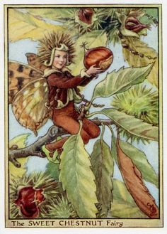 Sweet Chestnut Fairy by Cicely Mary Barker