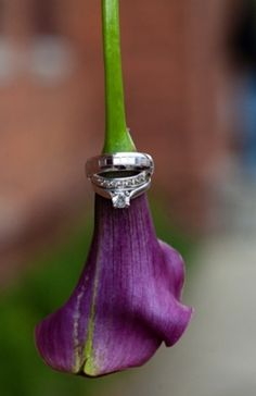 purple calla lily bride's bouquet purple calla lily ring shot diamond engagement and wedding rings