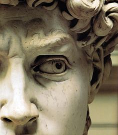 "Details of Michelangelo's masterpiece ""David"" 1501–1504"