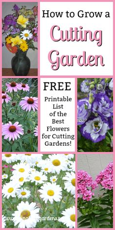 flower garden care Learn How to Grow a Cutting Garden, includes a Free Printable List of 53 of The Best Flowers for a Cutting Garden Cut Flower Garden, Beautiful Flowers Garden, Amazing Flowers, Flower Pots, Flower Gardening, Flowers For Cutting Garden, Cut Garden, Garden Care, Flower Farm