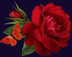 Dibujo de rosa roja y mariposa